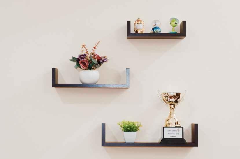plant-prize-shelves-74942.jpeg
